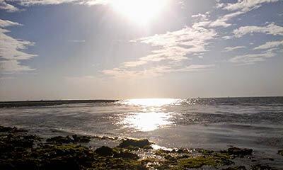 Narara_sea2