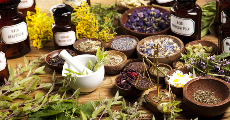 Alternative Medicine, Herbs and Food Supplements Suppliers